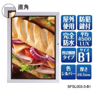 SFSL003-3--B1